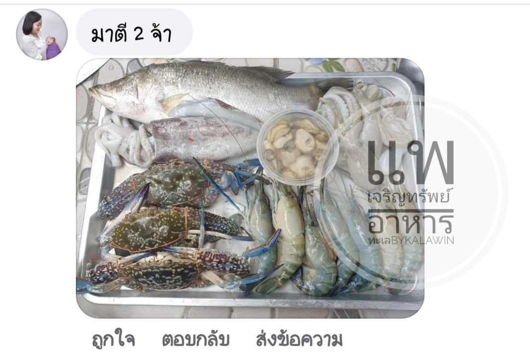 แพเจริญทรัพย์ กล่องสุ่มอาหารทะเล